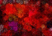 Blumenfeuer von Eckhard Röder