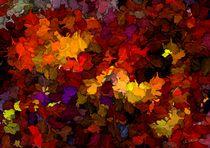 Herbstimpressionen von Eckhard Röder