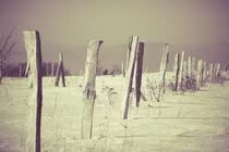Alter Zaun im Winter von dresdner