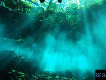 Cenote by Damien Schumann