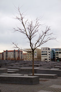 Berlin,Holocaust monument von Nathalie Matteucci