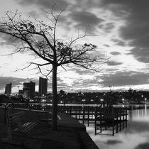 when the sun falls behind the city von erich-sacco