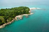 Jungle-island