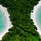 Betwenn-jungle-pty