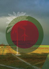 Windmills by Tommaso Catalucci