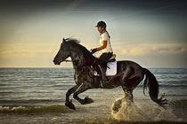 Full gallop by Erik Schimmel