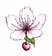 Cherry blossom by Lovro  Srebrnic