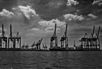 Harbour Giraffes by disasterlab