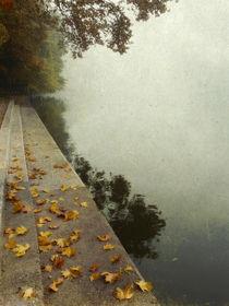 Nebelherbst im Hochformat by Franziska Rullert