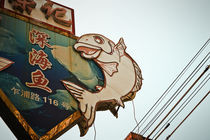 Fish Sign von Jason  Duvall