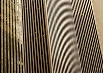 Vertical Lines by grapunzel
