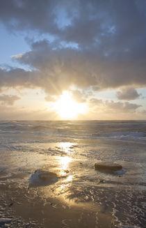 Seaworld by Michael Beilicke