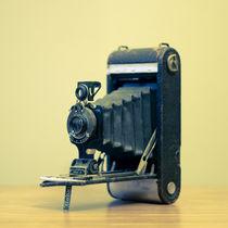 Kodak by Caitlyn Eakins
