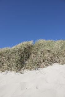 Dune I von Michael Beilicke