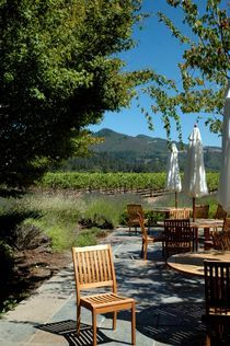 Napa Cafe by Michelle Rabe