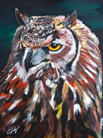 Great Horned Owl von Craig S