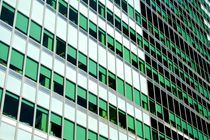 Green Windows by grapunzel