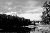 Autumn Lake Black and White by cjwesselsphotography