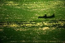shadow landing by JACINTO TEE