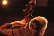 Miroslav Vitous - Live in Roma (ITALY) von Nathalie Matteucci