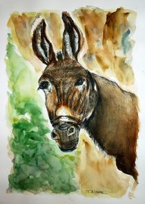 Donkey by Therese Alcorn
