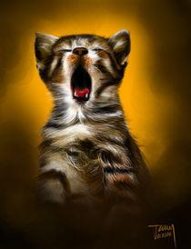 Kitten Yawn by jann-galino