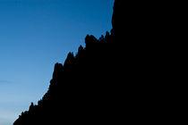 Silhouette by Craig Hoffman