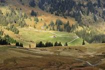 Schweizer Landschaft im Herbst von ralf werner froelich