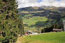 Schweizer Idylle im Simmental by ralf werner froelich