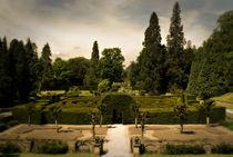 The Secret Maze by Bernard Cavanagh