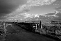 Storm Light by Bernard Cavanagh