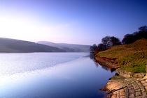 Reservoir by Bernard Cavanagh
