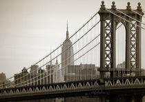 Newyork08-067-edit-fart