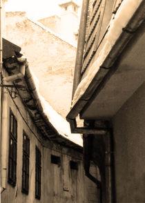 Street lines 2/3 by Katalin Szasz-Bacso
