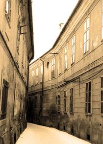 Street lines 3/3 by Katalin Szasz-Bacso
