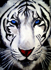White Tiger by laura seed