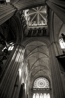 Vaults of Rouen Cathedral by RicardMN Photography
