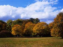 Hyde Park_03 von mvg foto