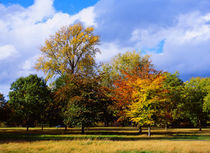 Hyde Park_02 by mvg foto
