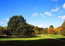 Hyde Park_06 von mvg foto