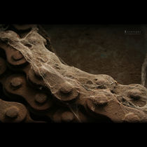 Rusty Chain by Federico Ianeselli