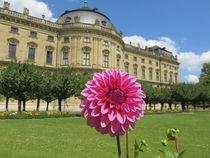 A Flower von kdop