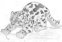 Snow-leopard-cub-by-caitiedidd-d3k3wyy