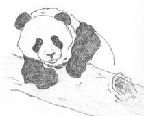 Panda Cub  by Caitlin Wells