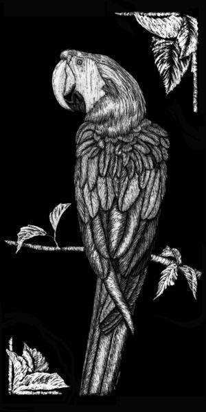 Parrot-bw
