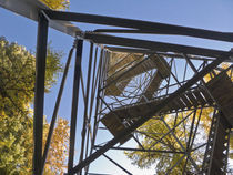 looking up Hoodoo firetower by Ed Book