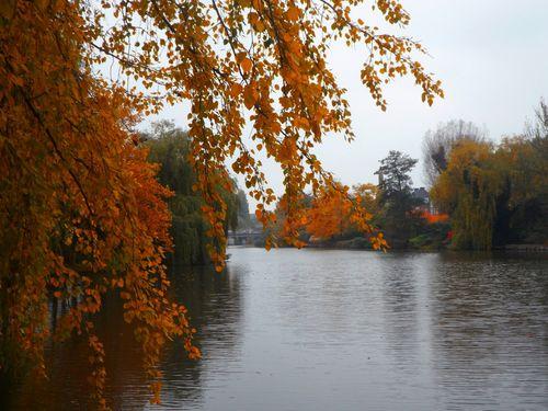 Herbstlicherflusslauf