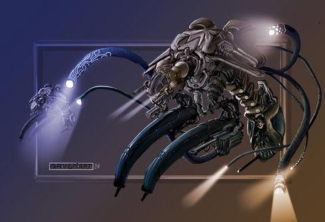 Wasp-blackship