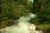 Mountain stream by grapunzel