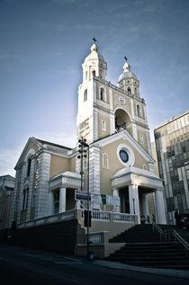 Metropolitan Cathedral of Florianópolis von Arthur Brognoli